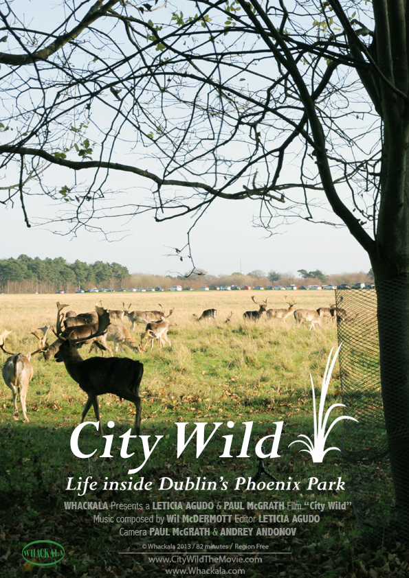 City Wild poster for id communications